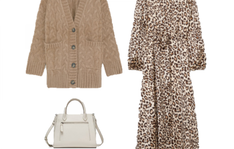 Outfit of the day: Leopard Dress